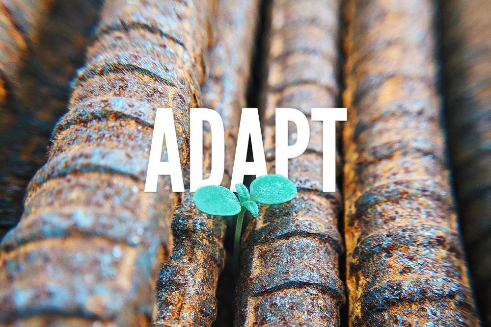 Marketing Tips: Adapt