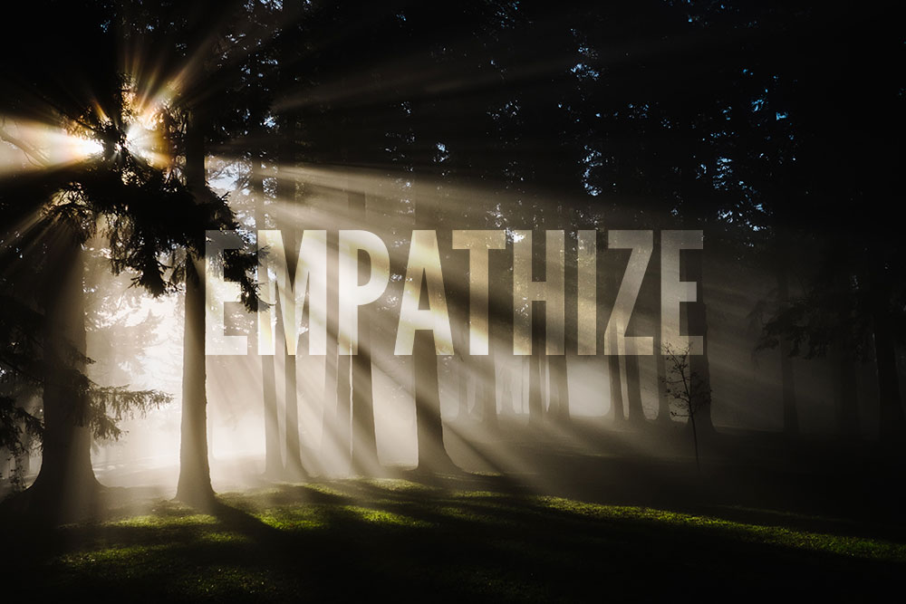 Empathize - Sunrise breaking into the forest